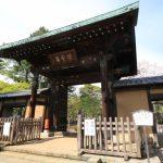 豪徳寺|東京都のパワースポット