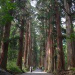 戸隠神社|長野県のパワースポット