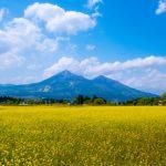 磐椅神社|福島県のパワースポット
