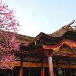 太宰府天満宮|福岡県のパワースポット