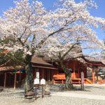 富士山本宮浅間大社|静岡県のパワースポット