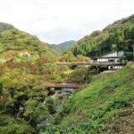 三仏寺|鳥取県のパワースポット