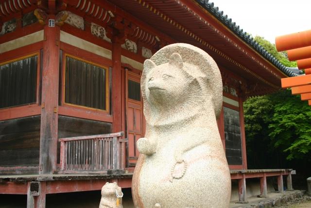 太三郎狸の伝説