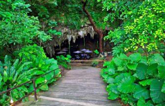 ガンガラーの谷|沖縄県のパワースポット/神社|パワースポット検索/神社検索。
