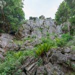 大石林山|沖縄県のパワースポット