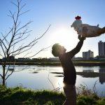 飛鳥坐神社|奈良県のパワースポット|パワースポット検索。