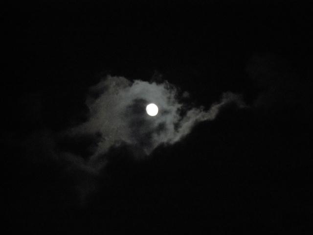 毛谷黒龍神社|福井県のパワースポット/神社|パワースポット検索/神社検索。