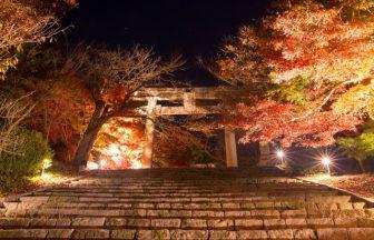 竈門神社|福岡県のパワースポット|パワースポット検索。