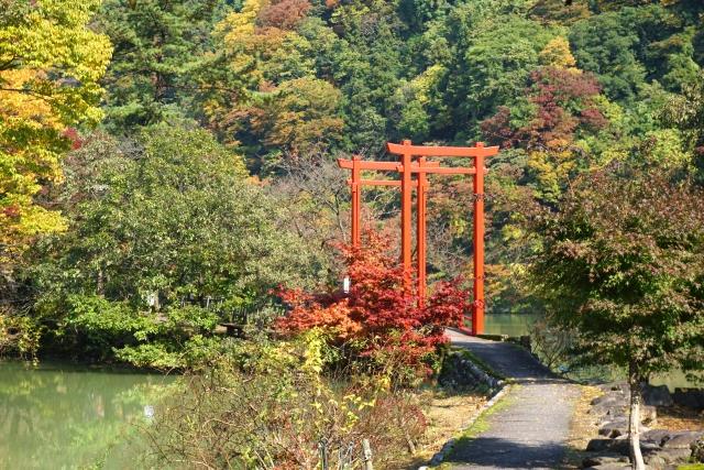 鯉恋の宮|富山県のパワースポット/神社|パワースポット検索/神社検索。