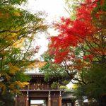 速谷神社|広島県のパワースポット