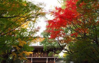 速谷神社|広島県のパワースポット/神社|パワースポット検索/神社検索。