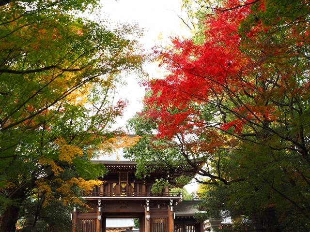 速谷神社|広島県のパワースポット|パワースポット検索。