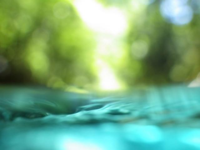 伏見の七名水の一つ
