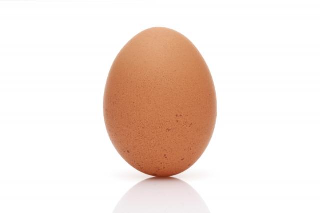 弁財天の卵のご利益