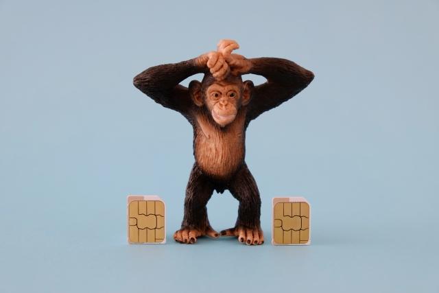 気に入った猿の置物を持ち帰って願いを叶える