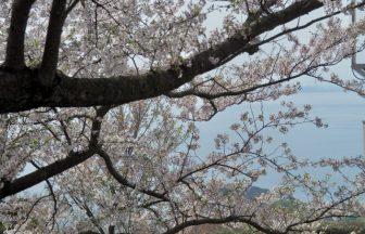 荘内神社|山形県のパワースポット/神社|パワースポット検索/神社検索。