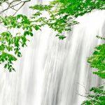 白瀑神社|秋田県のパワースポット/神社|パワースポット検索/神社検索。