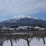 高照神社|青森県のパワースポット/神社|パワースポット検索/神社検索。