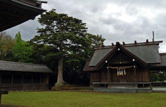 安房神社|千葉県のパワースポット/神社|パワースポット検索/神社検索。