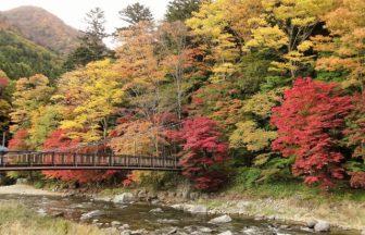 塩原八幡宮|栃木県のパワースポット/神社|パワースポット検索/神社検索。