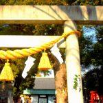 伊奴神社|愛知県のパワースポット/神社|パワースポット検索/神社検索。