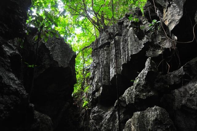 断崖に立つ社殿