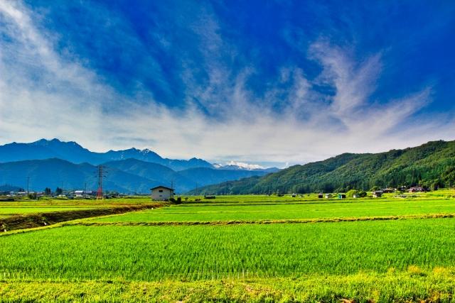 穗高神社|長野県のパワースポット|パワースポット検索。