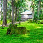 平泉寺白山神社|福井県のパワースポット|パワースポット検索。